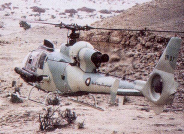 Quatar Qatargazelle